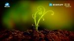 지구촌 뉴스 2020-03-10