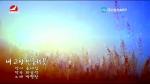 [요청한마당]내 고향 민들레꽃-박향란