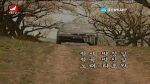 [요청한마당]매 돌-리호원
