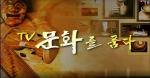 TV문화를 품다 2020-06-12 (꿈을 노래하는 소프라노 박은화)