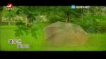 [요청한마당]꽃우산 꽃양산-안룡수,마복자