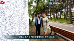 TV문화를 품다 2020-06-26