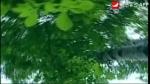 중창 <산은 산은 말이 없어도>, 작사: 김응준, 작곡: 리철수, 노래: 연길시연신소학교 중창단, 지도: 박해연