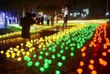 중국조선족민속등불축제 무료로 즐기기~! (무료입장권 수령 방법)