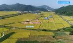 【手机可视广播】2021새해맞이문예야회--연변가요련창