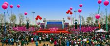 [5.1'행사 정보] 중국·화룡진달래국제문화예술축제 5월 1일 개막