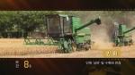 순간60s-안휘 '삼하'밀 수확에 한창