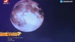[요청한마당]달 속의 어머니-김향월