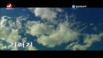 [요청한마당] 기러기 - 김선희