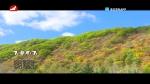 [요청한마당] 가을련가 - 박은화