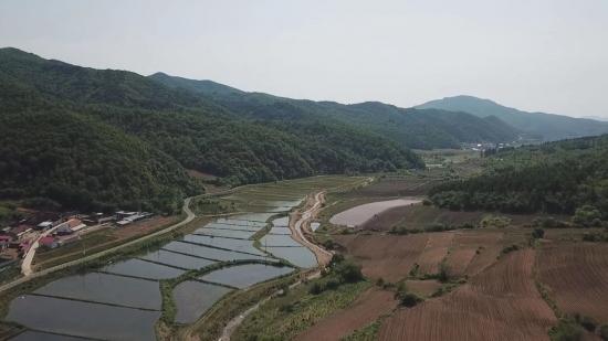 [안도뉴스] 룡천촌, 산업발전 다그쳐 향촌진흥에 전력