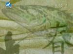 [즐거운 낚시] 2016-06-12